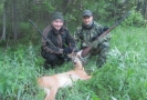 roe deer hunting